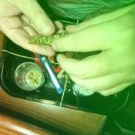 How to Roll a Infused Blunt with THC Oil